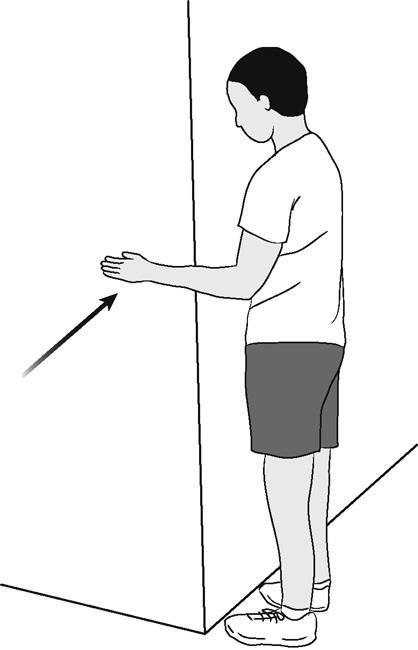 Иллюстрация внутреннего вращения плеча (изометрического)
