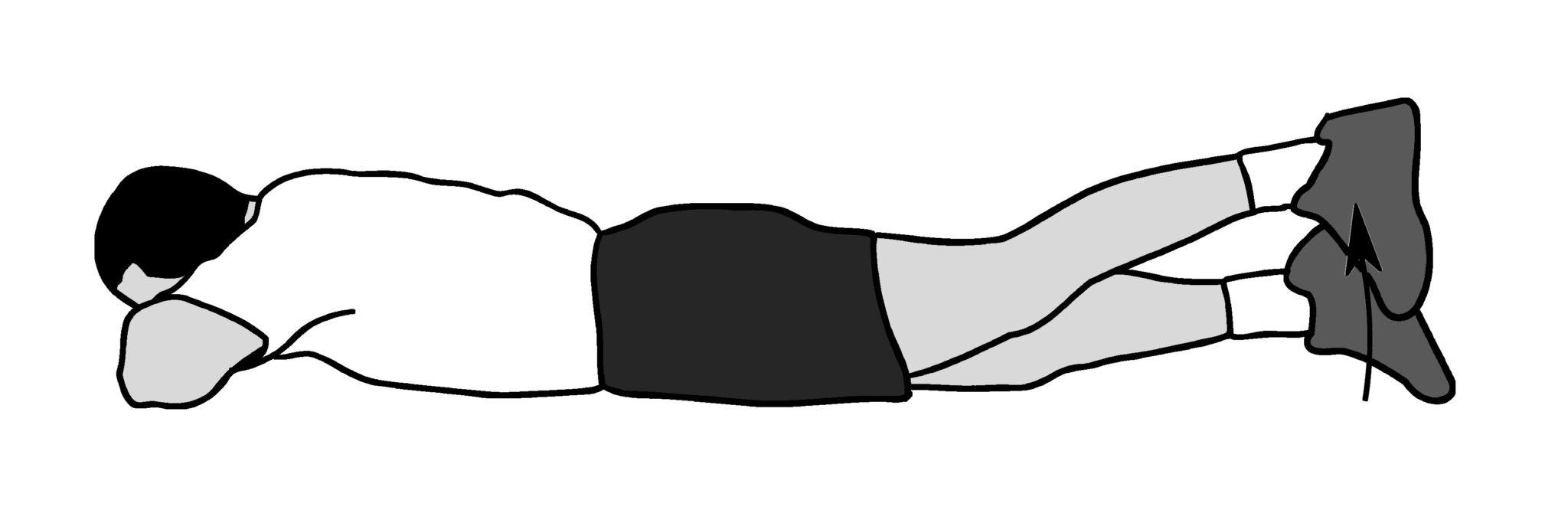 Прямые ноги поднимаются (подвержены)